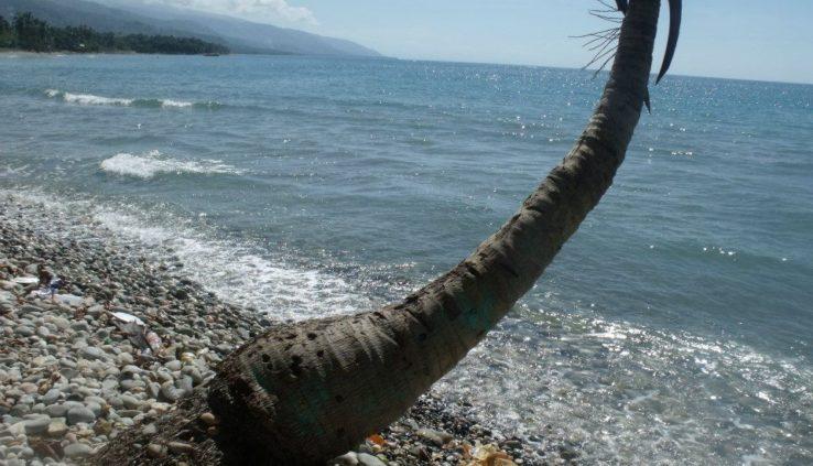 haitian creole words